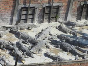 Noch nicht im Handtaschenformat: Die armen Krokodile von Kambodscha.