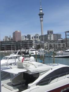 Schicke Yachten liegen in Aucklands Hafen vor Anker.