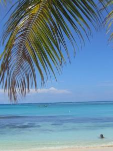 Die Fidschi-Insel sind ein wahres Paradies. Mancher Einheimischer möchte nur eins - hinaus in die weite Welt.