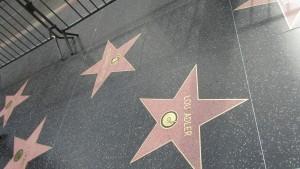 Walk of Fame - Sterne über Sterne ....