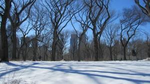 Central Park - weiße und ruhige Oase mitten in Manhattan.